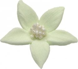 Płomyk kwiatki cukrowe 10szt seledynowe