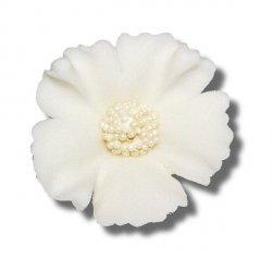 Chaber biały 5 szt. dekoracja cukrowa