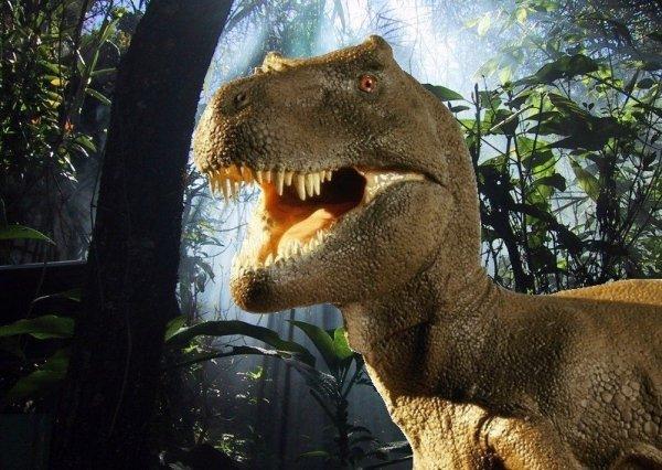 Hokus - opłatek na tort prostokątny Tyranozaur 8