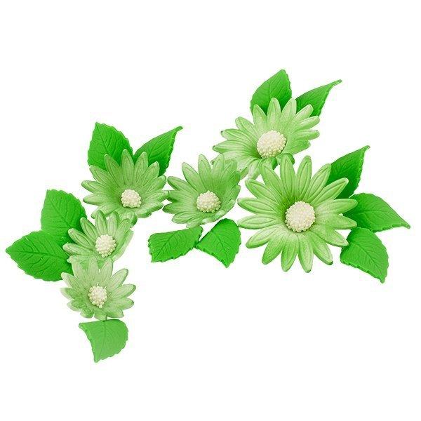 Zestaw cukrowe kwiaty na tort RUMIANEK z listkami ZIELONY
