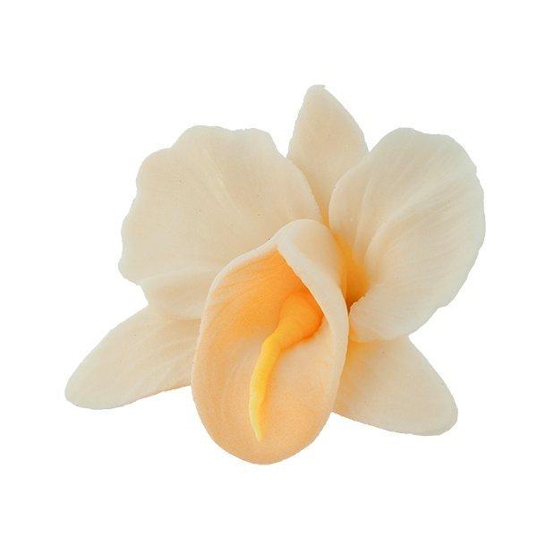 Storczyk kwiat cukrowy na tort 6cm ecru 1szt