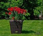 Dekoracje ogrodowe, czyli jak umilić czas relaksu