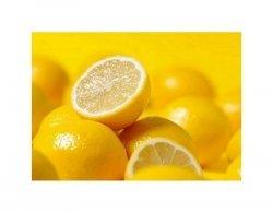 Cytryny żółciutkie - reprodukcja