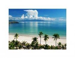 Beach Scene, Tropics, Pacific ocean - reprodukcja