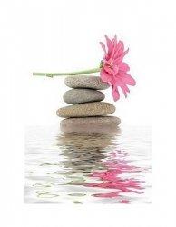 zen - spa stones with flower - reprodukcja