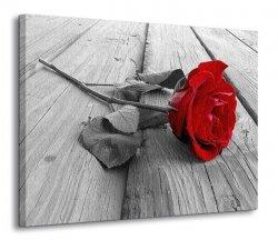 Obraz na ścianę - Róża na molo - 120x90 cm