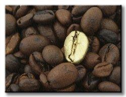 Obraz do kuchni - Złote ziarno kawy - 120x90 cm
