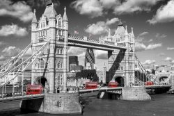 Tower Bridge Buses - plakat