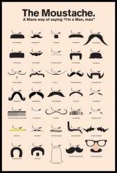 Wąsy, wąsiki - plakat