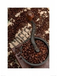 Coffee Beans and Grinder - reprodukcja