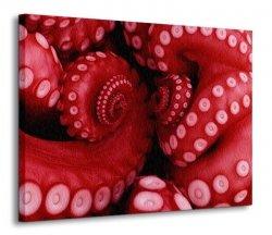 Ośmiornica - ognista czerwień - Obraz na płótnie