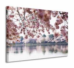 Obraz na płótnie - Kwiaty wiśni - 60x80 cm