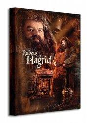 Harry Potter (Hagrid) - Obraz na płótnie
