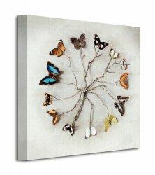 Obraz do salonu - Butterfly Harmony