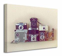 Obraz do sypialni - Camera Collection