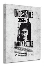 Obraz na płótnie - Harry Potter (Undesirable No.1)