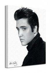 Obraz na płótnie - Elvis (Portrait) - 40x50 cm