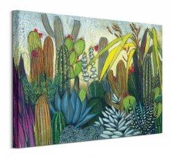 Succulents - Obraz na płótnie