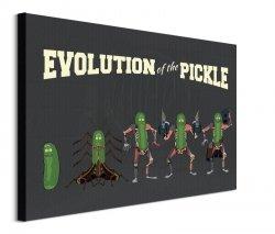 Rick and Morty Evolution Of The Pickle - obraz na płótnie