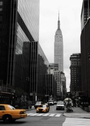 Fototapeta - Emipre State Building, Manhattan - 183x254 cm