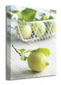 Lemons - Obraz na płótnie