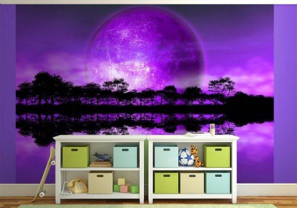 Fototapeta na ściane - Rising of The Moon - 254x183 cm