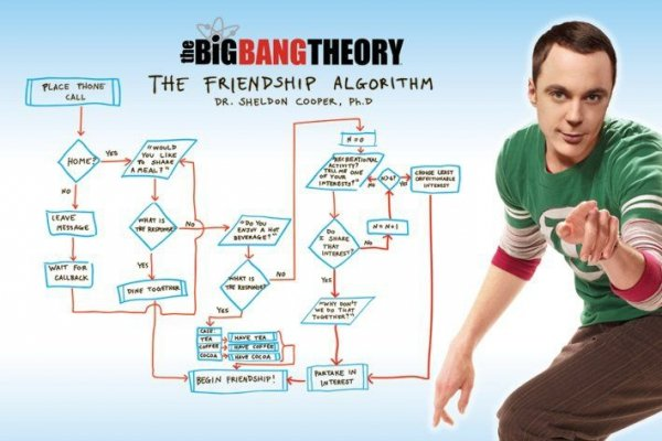The Big Bang Theory - Friendship Algorithm - plakat