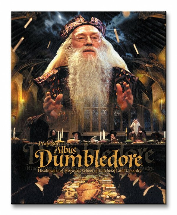 Obraz do sypialni - Harry Potter (Dumbledore)