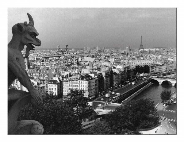 Obraz na ścianę - Widok z Katedry Notre-Dame, Paris - DecoArt24.pl