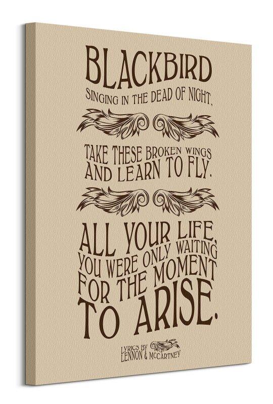 Lennon & McCartney Blackbird - obraz na płótnie
