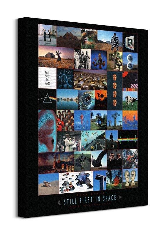 Pink Floyd Anniversary - obraz na płótnie