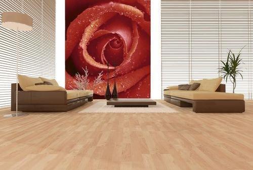 Fototapeta Czerwona Róża - Fototapety z kwiatami decoart24,pl