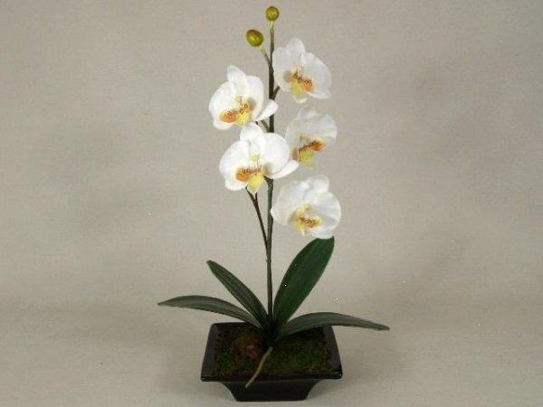 Sztuczny Storczyk Orchidea W Doniczce Biały 28x50cm