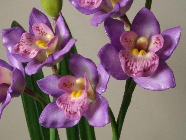 Storczyk sztuczny - Orchidea - W doniczce - Sklep internetowy decoart24.pl