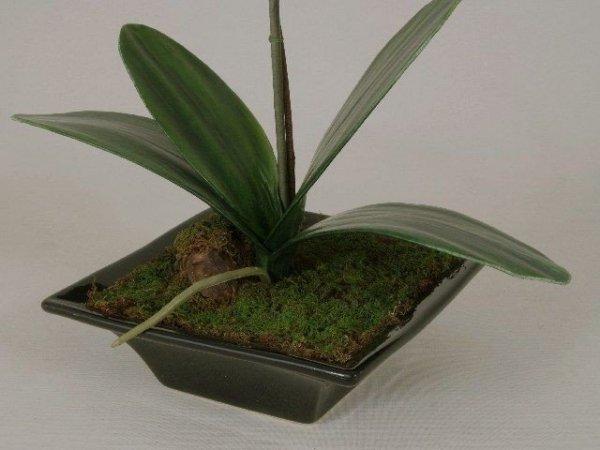 Sztuczny storczyk - Orchidea - W doniczce - Biały - 28x50cm