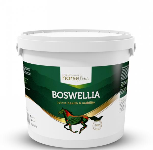 HorseLinePRO Boswellia Serrata silnie działający preparat przeciwzapalny wzmacniający ścięgna i stawy 2kg 24H