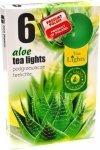 PODGRZEWACZ 6 SZTUK TEA LIGHT Aloe