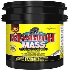 INTERACTIVE NUTRITION MAMMOTH 2500 - 4530g