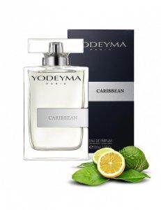 YODEYMA CARIBBEAN - DIOR SAUVAGE (Christian Dior)